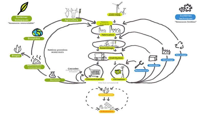 Eco-économiee 4