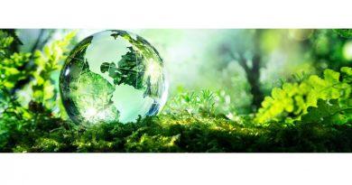Écologie 5
